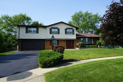 Hoffman Estates Single Family Home For Sale: 3933 North Firestone Lane