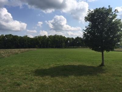 Woodstock Residential Lots & Land For Sale: 2209 Ann Lane