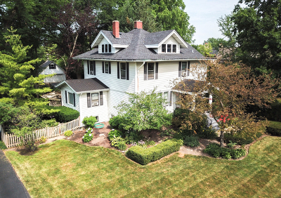Elmhurst Single Family Home For Sale: 390 South Hill Avenue