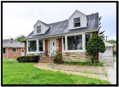 Mount Prospect Single Family Home For Sale: 10 South Hi Lusi Avenue