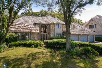 Orland Park Single Family Home For Sale: 14713 Crystal Tree Drive