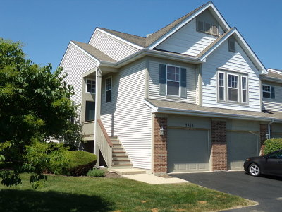 Naperville Condo/Townhouse For Sale: 2965 Saganashkee Lane