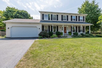 Oswego Single Family Home For Sale: 227 Ashley Court