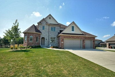 New Lenox Single Family Home For Sale: 15835 Mueller Way