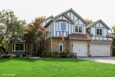 Naperville Single Family Home For Sale: 948 Norwood Court