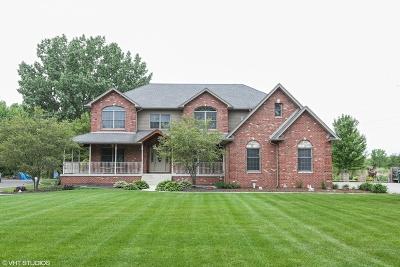 Homer Glen Single Family Home For Sale: 12008 West Mackinac Road