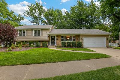 Naperville Single Family Home New: 1204 Hercules Lane