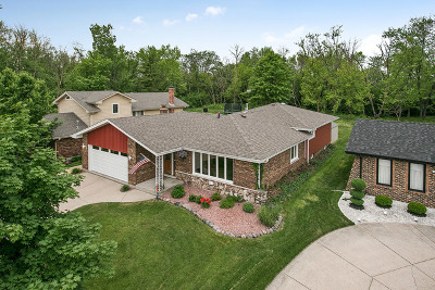 Oak Forest Single Family Home For Sale: 15624 Linden Drive