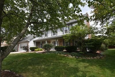 Wheaton Single Family Home For Sale: 159 Christina Circle