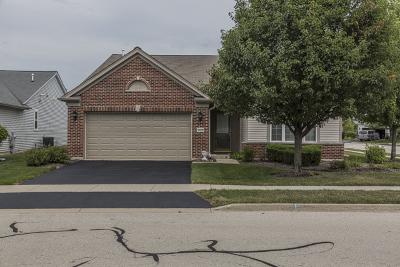 Elgin Single Family Home For Sale: 2434 Rolling Ridge Lane