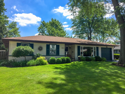 Arlington Heights Single Family Home For Sale: 1817 North Fernandez Avenue