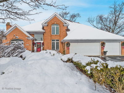 Glen Ellyn Single Family Home For Sale: 22w340 Stanton Road