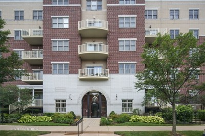 Downers Grove Condo/Townhouse For Sale: 965 Rogers Street #104