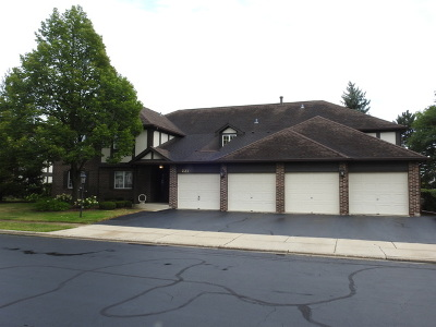 Willowbrook Condo/Townhouse For Sale: 221 Stanhope Drive #C