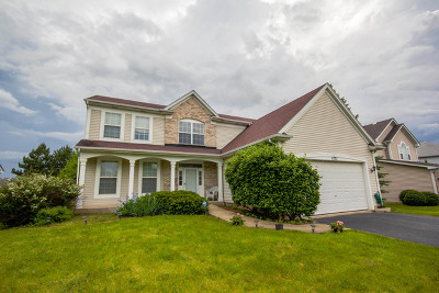 Bolingbrook Single Family Home For Sale: 1521 Lang Drive
