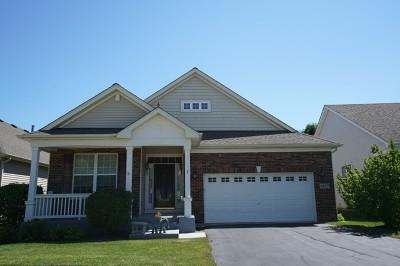 Hoffman Estates Single Family Home For Sale: 1827 Eton Drive