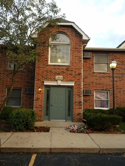 Lake In The Hills Condo/Townhouse For Sale: 1384 Cunat Court #1A