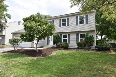 St. Charles Single Family Home For Sale: 725 Lexington Avenue