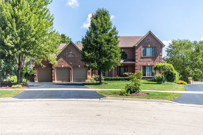 Woodridge Single Family Home For Sale: 6 Nadelhoffer Court