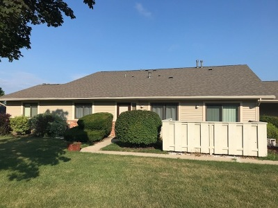 McHenry Condo/Townhouse For Sale: 419 North Thornwood Drive #B