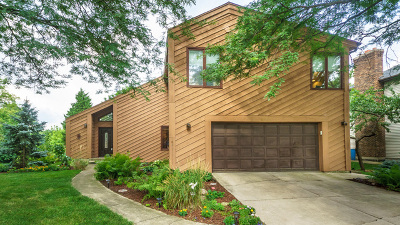 Woodridge Single Family Home New: 6228 Meyer Road