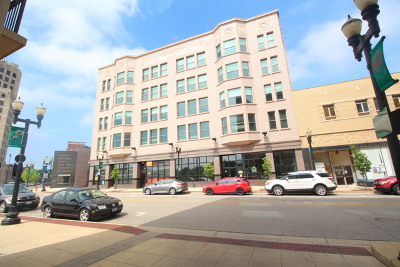 Elgin Commercial For Sale: 25 South Grove Avenue #500