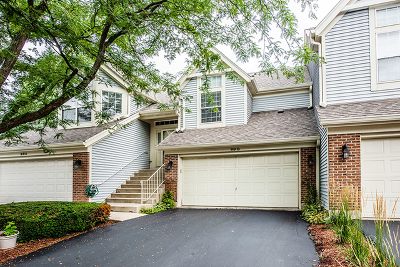 South Elgin Condo/Townhouse Price Change: 99 Ione Drive #B