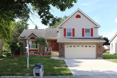 Schaumburg Single Family Home For Sale: 2509 Lawn Court