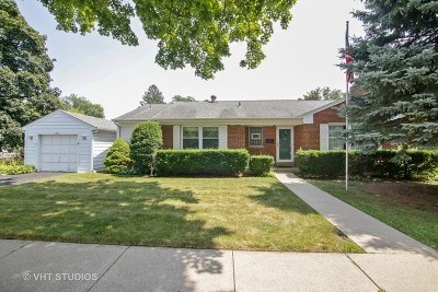 Arlington Heights Single Family Home New: 603 North Hickory Avenue