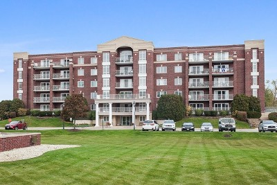 Niles Condo/Townhouse For Sale: 7071 West Touhy Avenue #604