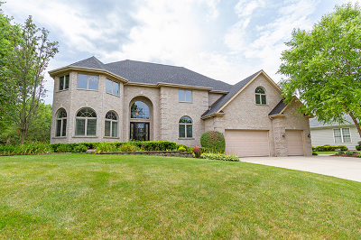 Carpentersville Single Family Home For Sale: 3280 Oak Knoll Road