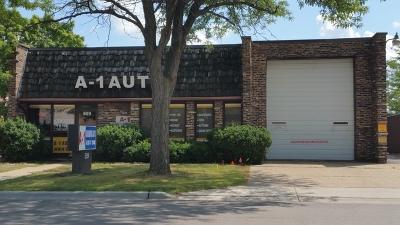 Schaumburg Commercial For Sale: 509 Lunt Avenue