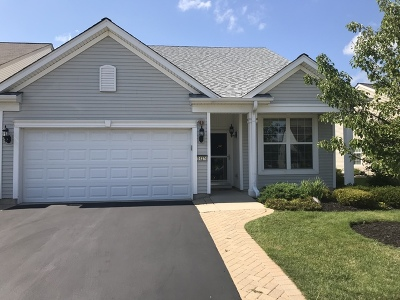 Huntley Single Family Home For Sale: 14274 Flagstaff Court