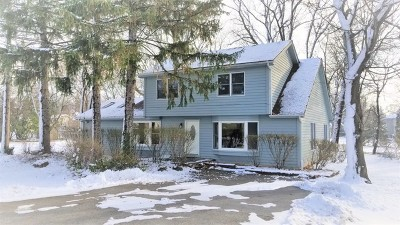 Wheaton Single Family Home For Sale: 1010 East Thomas Road