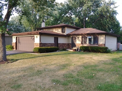 South Elgin Single Family Home For Sale: 665 Renee Drive