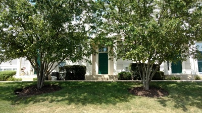 Round Lake Condo/Townhouse Contingent: 34383 North Goldenrod Court #34383