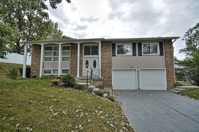 Bolingbrook Single Family Home For Sale: 311 Charlestown Drive