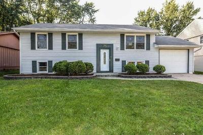 Streamwood Single Family Home For Sale: 1002 Sunnydale Boulevard