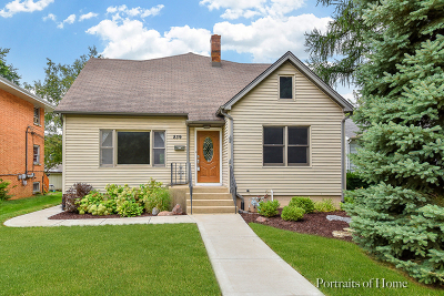 Naperville Single Family Home For Sale: 839 North Brainard Street