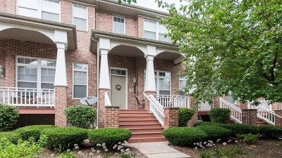 Lisle Condo/Townhouse For Sale: 6131 River Bend Drive