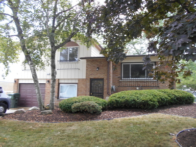 Richton Park Single Family Home For Sale: 4853 Imperial Drive