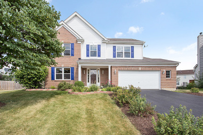 Bolingbrook Single Family Home For Sale: 4 Scarlet Court