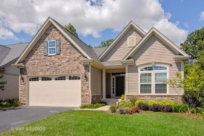 Aurora Single Family Home New: 1290 Everwood Lane