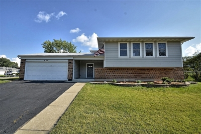 Bolingbrook Single Family Home New: 423 Falcon Ridge Way