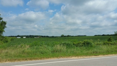 Mc Henry County Residential Lots & Land For Sale: 21018 Dunham Road