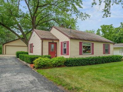 Lisle Single Family Home For Sale: 4628 Yackley Avenue