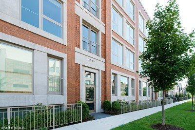 Condo/Townhouse New: 2755 North Lakewood Avenue #1N