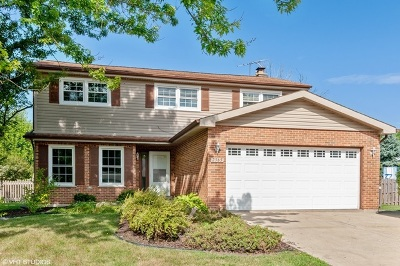 Naperville Single Family Home For Sale: 2565 Springdale Circle