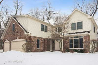 Lake Zurich Single Family Home For Sale: 289 Lions Court