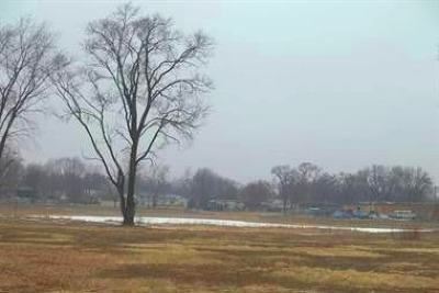 Tinley Park Residential Lots & Land For Sale: 17822 Oak Park Avenue